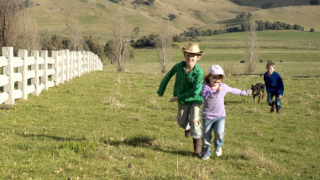 Three kids and a dog running along a white wooden fence in a paddock.